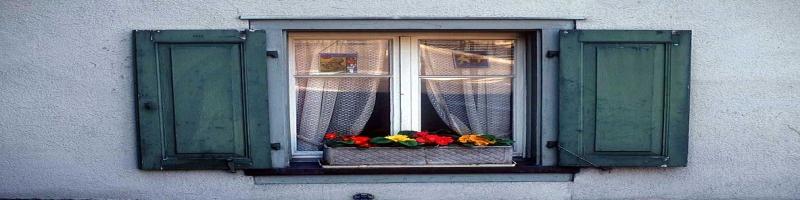 05_window